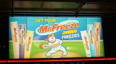 Mr. Freezy Bat